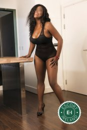 Book a meeting with Mature Dominique in Cork City today