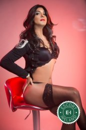 TV Sabryna XL is a high class Brazilian Escort Dublin 7