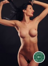 Angelina is a sexy Hungarian Escort in Douglas