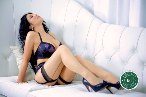 female escorts privatsex