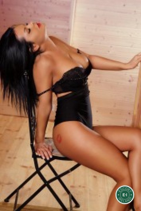 muschiwahl diary lady escort