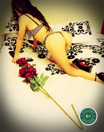 Agata is a sexy Italian escort in Dublin 6, Dublin