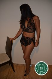 The massage providers in Dublin 2 are superb, and Sara Gran Canaria is near the top of that list. Be a devil and meet them today.