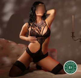 The massage providers in Dublin 15 are superb, and Sarah Massage is near the top of that list. Be a devil and meet them today.