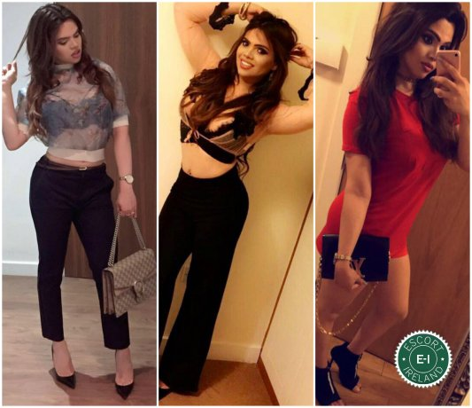 Meet the beautiful TS Iris Gomez  in Dublin 6  with just one phone call