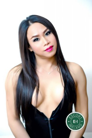 Meet the beautiful TS Thai Jenny in Dublin 9  with just one phone call