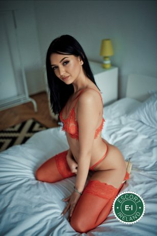 Book a meeting with Lizzy in Dublin 6 today