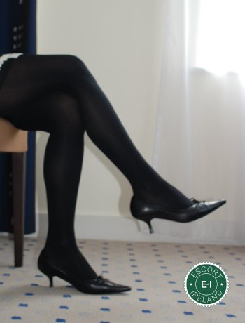 The massage providers in Dublin 1 are superb, and Nina Stocking Top Secretary Girl is near the top of that list. Be a devil and meet them today.