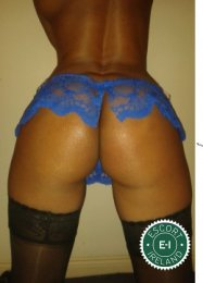 The massage providers in Dublin 9 are superb, and New Sensual Massage is near the top of that list. Be a devil and meet them today.