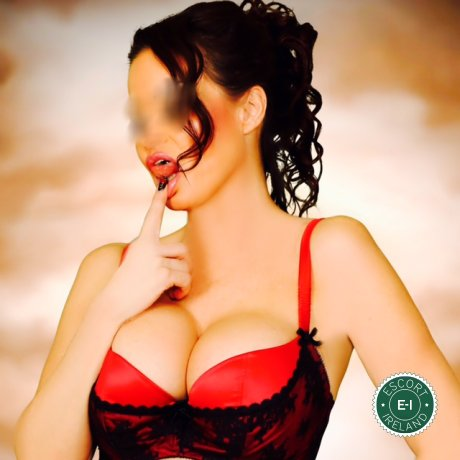 Meet the beautiful English Davina in Dublin 2  with just one phone call