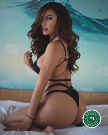 Book a meeting with Aylin  in Dublin 18 today