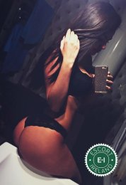 Book a meeting with Denisse  in Dublin 8 today
