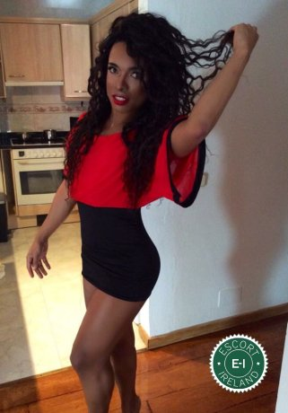 Nicole Pantera TV is a very popular Brazilian escort in Limerick City, Limerick