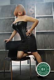 Meet Mature Barbara in Cork City right now!