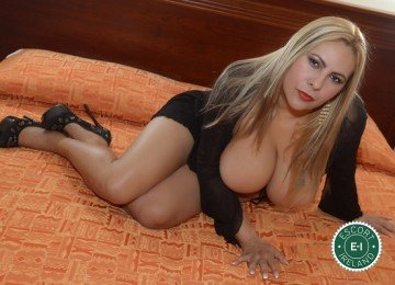 Marisol Sexy Star is a top quality German Escort in Galway City
