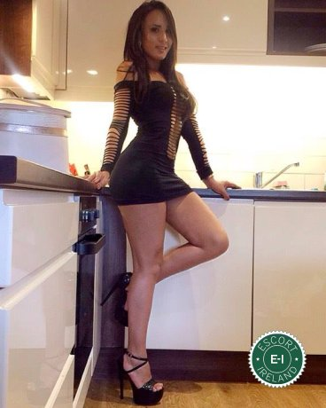 Book a meeting with Bruna TS in Belfast City Centre today