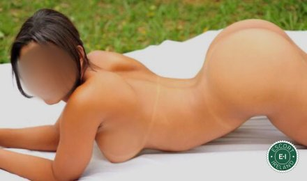 The massage providers in Dublin 6 are superb, and Penelope  is near the top of that list. Be a devil and meet them today.