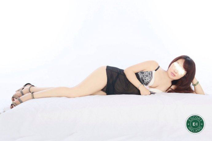 Sunshine is a hot and horny Taiwanese escort from Dundalk, Louth