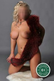 Spend some time with Kinky Angel in Castlebar; you won't regret it