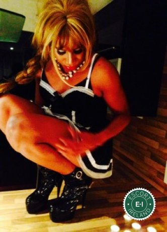 Darla TV  is a high class Venezuelan escort Dublin 15, Dublin