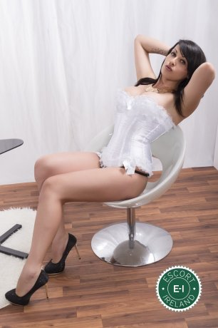 Meet the beautiful TS Maria in Tralee  with just one phone call