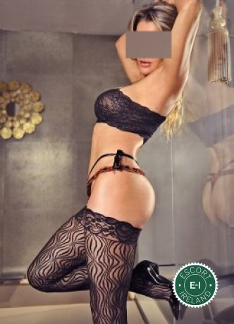Meet Sexy Tania  in Dublin 2 right now!
