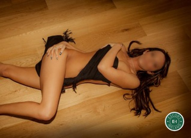 Leixlip escorts