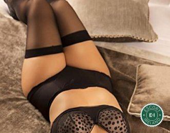 The massage providers in Dublin 9 are superb, and Angel Massage  is near the top of that list. Be a devil and meet them today.